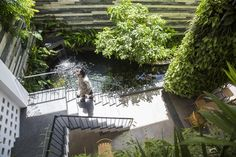 Image 4 of 37 from gallery of Babylon Garden Condotel / ALPES GDB. Photograph by Hiroyuki Oki Air Ventilation, Boarding House, Green Architecture, Tropical Landscaping, Coffee Design, Da Nang, Plant Wall, Garden S, Plant Design