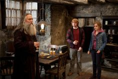 Aberforth Dumbledore, Ron Weasley, and Hermione Granger