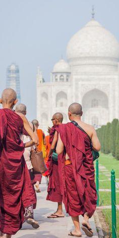 Monks visiting the Taj Mahal