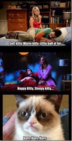 Happy Kitty, Sleepy Kitty.. - http://www.dodgyshit.com/pin/20620/happy-kitty-sleepy-kitty/