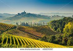 Langhe vineyards of Piedmont in autumn