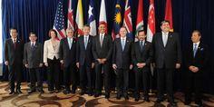 Cos'è il Trans-Pacific Partnership? Un trattato tra Stati Uniti e paesi del Pacifico che punta a creare un mercato unico semi-globale. Democrazie a rischio?