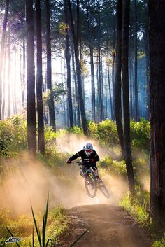 Monterey Mountain Bike provides a place to find the top Mountain bikes, Road Bikes, Cycling apparel, MTB gear and Accessories. Downhill Bike, Mtb Bike, Cycling Bikes, Mountain Biking, Photo Velo, Montain Bike, Mtb Trails, Bike Photography, Kayak