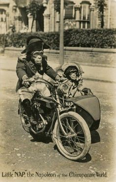 Nap takes the Mrs.for a ride in the sidecar