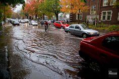 Submergés de réclamations dues aux dégâts d'eau en raison des canalisations municipales vétustes, qui causent inondations et refoulements d'égouts, les assureurs... Montreal, Real Estate, Personal Finance, Business, Water, Real Estates