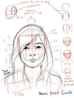 Anatomy Drawing Reference Jerome Okutho's insight: This simplified reference guide explains the anatomy of the human face and proportions of different facial features. If you're looking for a quick guide for your portrait drawings, this is it. Human Anatomy Drawing, Human Figure Drawing, Figure Drawing Reference, Anatomy Reference, Pose Reference, Drawing Skills, Drawing Techniques, Drawing Sketches, Art Drawings