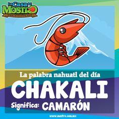 Chakali: Camarón