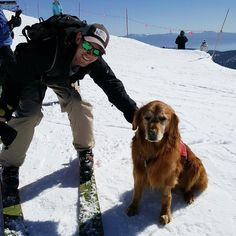 Wouldn't be a St. Patrick's day without taking a picture with Murphy the Avalanche Dog @squawalpine #patroldog #skipatrol #stpatricksday #california #keepsquawtrue #skiing #adventure #tahoe PC: @jval815 by bobinstagraham