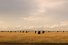Free for private and commercial use Hay Bales, Public Domain, Country Life, Free Stock Photos, View Image, Australia, Mountains, Nature, Summer