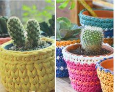 Como cuidar de cactos Cactus Plants, Straw Bag, Blog, Gardening, Cactus Types, Succulents In Glass, Succulent Terrarium, Picture Frame Art, Growing Plants