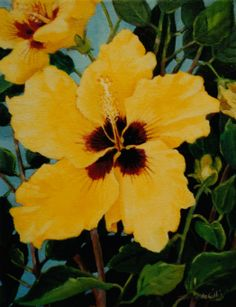 Yellow Hibiscus (sold)