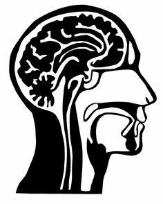 "Original Paper Cutting BRAIN Human ANATOMY 8x10"" Cross Section of HEAD -  Medical diagram illustration - Color Choice. $15.00, via Etsy."