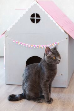 cr er une maison de jeu en carton pour nos chats id es chats maison chat chat et carton. Black Bedroom Furniture Sets. Home Design Ideas