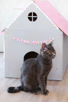 1000 id es sur le th me maisons en carton sur pinterest - Cabane pour chat en carton ...