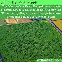 : 60-acre maze - WTF fun facts | March 5 2016 at 07:00AM March 05 2016 at 07:15AM