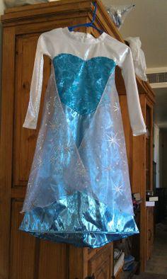 Frozen 'Elsa'  Dress.