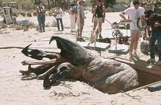 A great practical effect from the pre-CGI days on the set of the now-classic TREMORS (1990) pic.twitter.com/FBTln020si