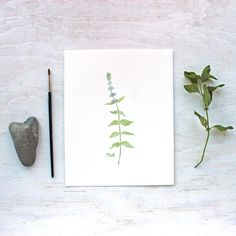 A beautiful 8 x 10 inch print of mint from my herb watercolor series printed on gorgeous paper. This lovely herb is delightful in the garden and kitchen. Mmmmmm...the scent. I loved painting its prett