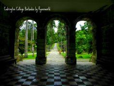 Codrington College Barbados by ryannworld.deviantart.com