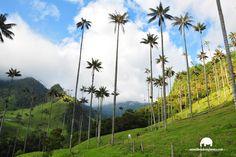 Social, Html, Mountains, Nature, Travel, Travel Tours, Adventure Travel, Screensaver, Sailing Ships