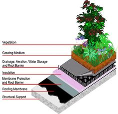 green roof model. info at bottom of page, multiple how-to links