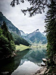 Seealpsee Appenzell Alpstein Dream Dates, Zermatt, Nature Animals, Train Travel, Alps, Bellisima, Switzerland, Landscape Photography, The Good Place