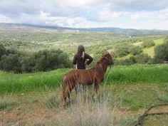 Andrea Patrizia Wiener Angelakis,Kreta, Reiten