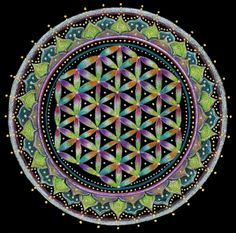 Flower of Life by Laural Virtues Wauters