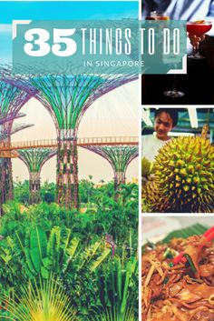 New in town, or expecting guests and in need of awesome days out around the Island? Read on for fun, scenic and cool things to do in Singapore