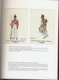 Army of Egypt: Plate 18: 9th Line Infantry Demi-Brigade, Fusilier, 1800. + Plate 19: 9th Line Infantry Demi-Brigade. Fusilier Company Drummer, 1800.