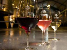 South African Wine, Wines, Red Wine, Vineyard, Alcoholic Drinks, Amp, Glass, Drinkware, Vine Yard