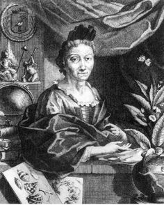 Maria Sibylla Merian : Naturalist and artist, born Frankfurt, Germany. Her exploration of the lifecycle of caterpillars, their transformation into butterflies and the plants they used to feed themselves became the basis for her first two books. History Class, Art History, Botanical Art, Botanical Illustration, Nature Illustration, The Queen's Gallery, Sibylla Merian, Anna, Badass Women