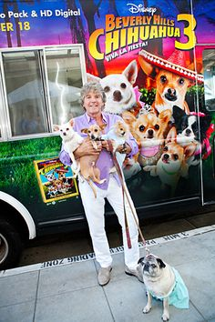 Beverly Hills Chihuahua Pup-arazzi Shots Tied to the Release of Beverly Hills Chihuahua 3
