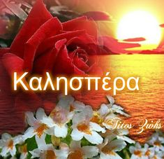 Greek Language, Beautiful, Plants, Anastasia, Google, Greek, Plant, Planets