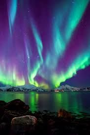 northern lights real northern lights alaska - Google Search Alaska Northern Lights, Breath Away, Exotic Pets, Iceland, Breathe, Planets, Beautiful Places, Sky, Travel