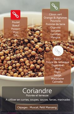 In broths and court-bouillons Veggie Recipes, Dog Food Recipes, Cooking Recipes, Healthy Recipes, Coriander Seeds, Food Science, Churros, Croissant, Food Hacks