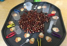 Conker madness exploring filling and emptying containers using spoons and tweeze. Conker madness e Autumn Eyfs Activities, Forest School Activities, Nursery Activities, Motor Activities, Preschool Activities, Maths Eyfs, Eyfs Classroom, Numeracy, Continuous Provision Year 1