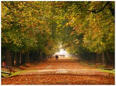 autumn iv by ~andrei-joldos on deviantart Cool Pictures, Beautiful Pictures, Beautiful Park, Places To See, Country Roads, Deviantart, Autumn, Landscape, Forests
