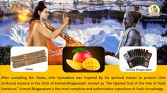 """After compiling the Vedas, Srila Vyasadeva was inspired by his spiritual master to present their profound essence in the form of Srimad-Bhagavatam. Known as """"the ripened fruit of the tree of Vedic literature,"""" Srimad-Bhagavatam is the most complete and authoritative exposition of Vedic knowledge."""