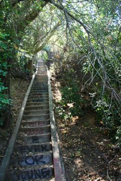 Top 10 L.A. hikes / Best hiking trails from Jetpac