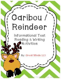 Caribou / Reindeer informational and nonfiction unit - includes a nonfiction reader for students, 15 worksheets that can be used with this unit or other nonfiction texts, and great informational writing resources including maps of the nonfiction reader, prewrites, and final draft papers