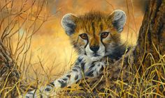 """""""Baby Cheetah"""", oil on canvas, 12"""" x 20"""", by Lucie Bilodeau. A painting of a baby Cheetah, in Africa."""