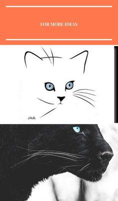 Cartes postales d'art félines feline