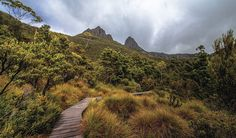 Raised hiking trail Cradle Mountain national park, Tasmania