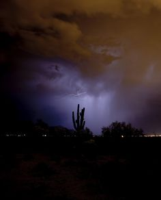 An Arizona Monsoon, captured by Ryan Melzer