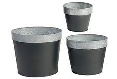 Asst. of 3 Chalkboard Planters on OneKingsLane.com