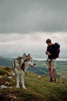 Gonna go on adventures with my husky or American eskimo dog like this one day :)