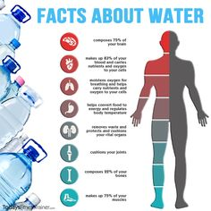 water in the human body facts - Google Search
