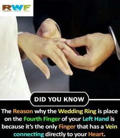 Such a beautiful Wierd Facts, Wow Facts, Intresting Facts, Real Facts, True Facts, Funny True Quotes, Real Life Quotes, Reality Quotes, Interesting Science Facts