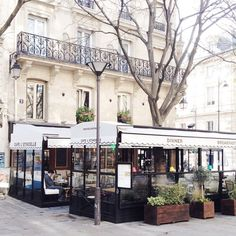 Morning in Le Marais - Copyright Carla Coulson